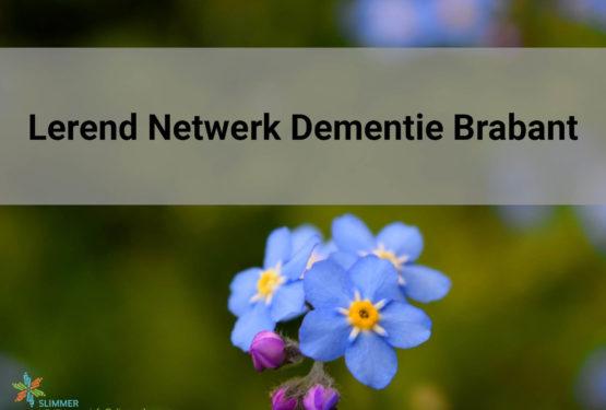 20e bijeenkomst Lerend Netwerk Dementie